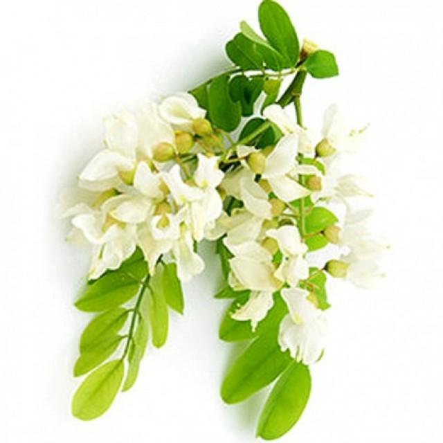 Crema-gel echilibranta pentru ten mixt sau gras, 50ml - Natura Siberica